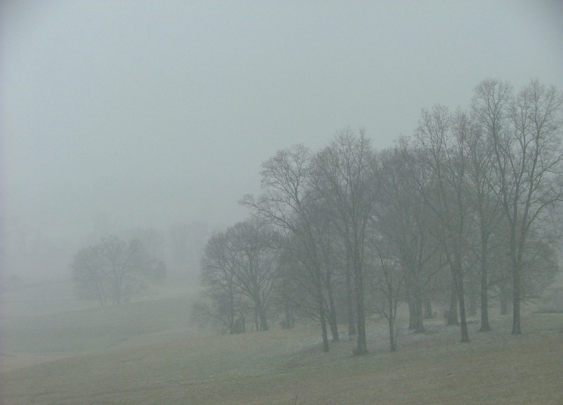 February_snow3